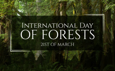 International Day of Forests 2020